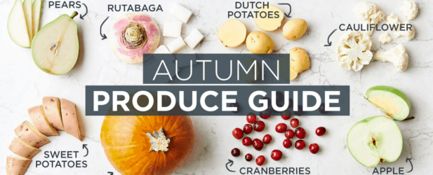 Fall Produce Guide